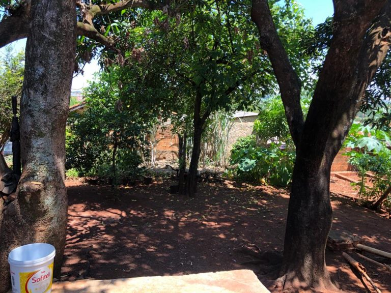 Jardim Anchieta